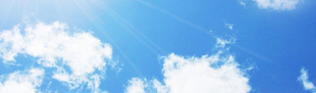 太陽のひざし